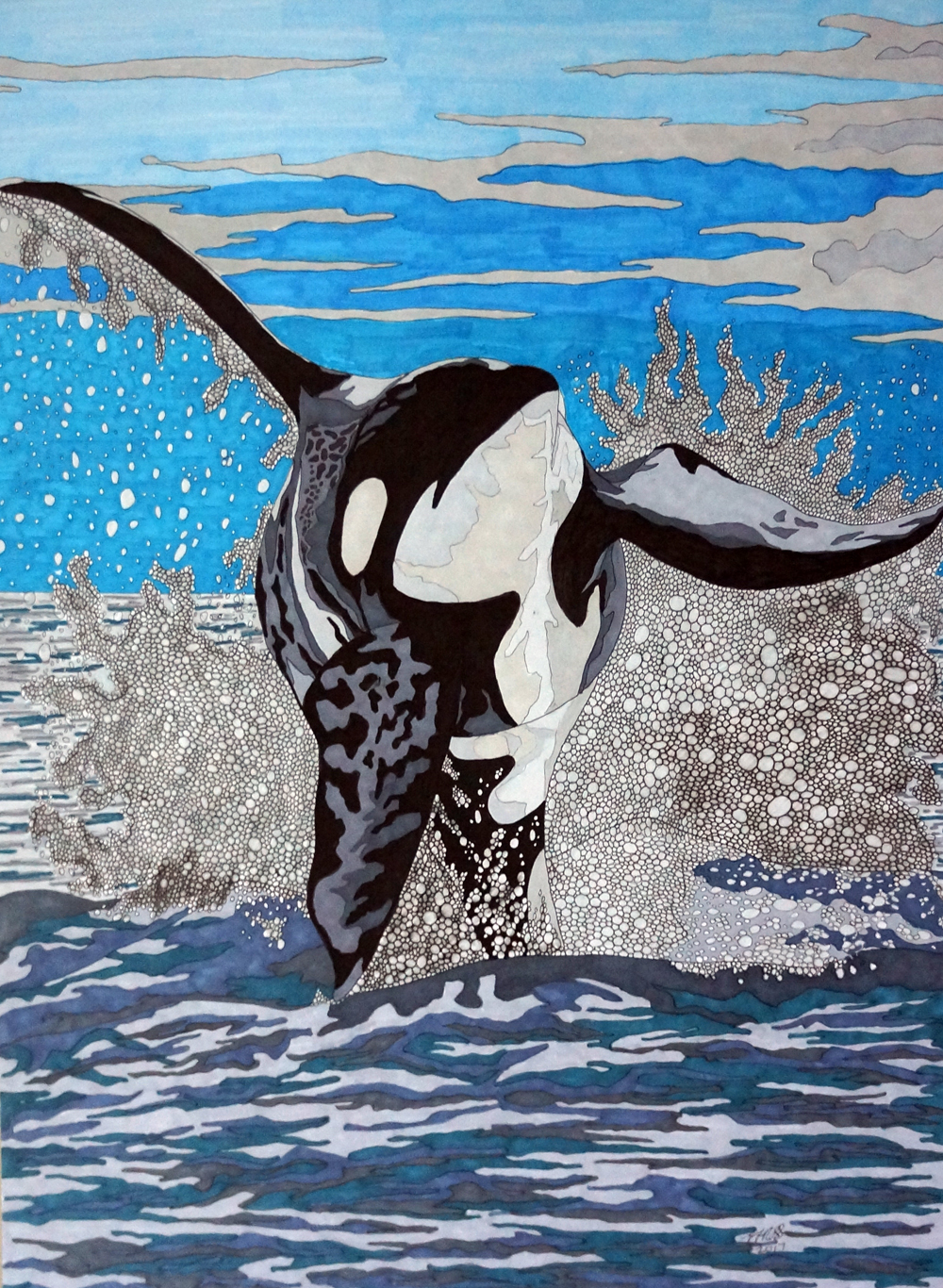 Orca by Sharon T Ross 2017 pen and ink on 250gsm paper 55x40cm (2)